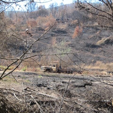 Valle Itata_18.01.2012